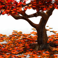 My attempt at modeling a Japanese maple tree in Wings3d